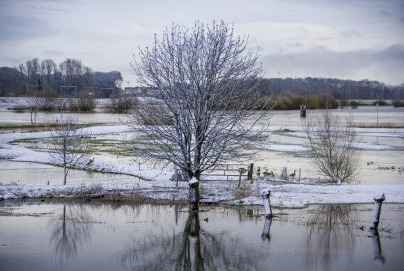 winter landschap, natuur foto, hattem, sneeuw